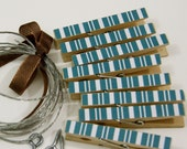 Clothesline Kit. Blue Stripe Clothespins and Hanging Wire