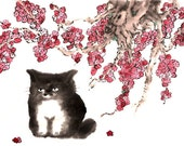 5 x 7 Inscrutable Cat greeting card