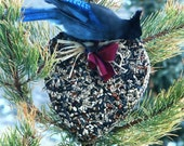 Wild Bird Seed Feeder Big Heart - Organic - wreath