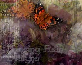 Butterflys Are Free Fine Art Print