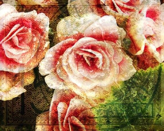 Blushing Begonia FineArt Print