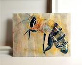 Honey Bee- an original watercolor collage