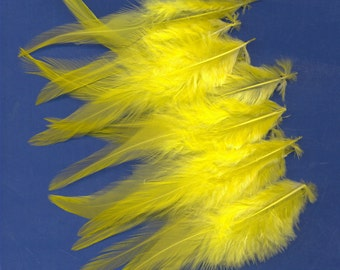 15 Feathers , Yellow  Chicken Hackles