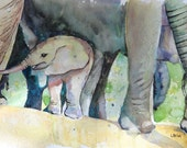 Watercolor Elephant, Baby Elephant