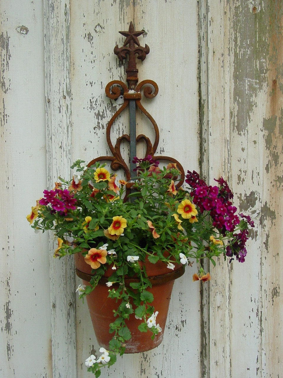Wall Mounted Plant Holder Steel Pot Ring By Inspiredgardens