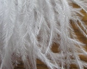 White Ostrich Fringe Trim -- 5 inches -- Best Price on Etsy