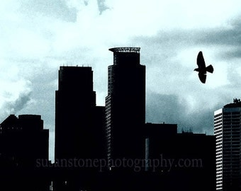 Bird Flies Over Minneapolis, Minnesota Blue, 12x18 inch  art photo,  home decor, wall art, office art, kitcehen art