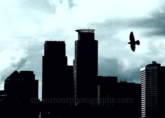 Bird Flies Over Minneapolis,  Minnesota Blue Skies  digital photo, home decor, wall art, office art