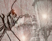 """Facebook Timeline Cover Banner """"Bugs Life in Paris"""""""