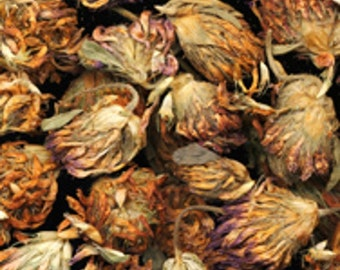 1/2 oz Red Clover Herbal Tea