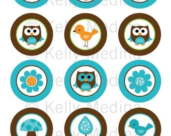 Owl - Aqua and Brown - 2 inch Circle Digital Collage Sheet - Commercial use for Cupcake Toppers, Magnets, Paper Crafts and Products