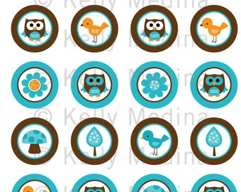 Owl - Aqua and Brown - 1.5 inch Circle Digital Collage Sheet - Commercial use for Cupcake Toppers, Magnets, Paper Crafts and Products