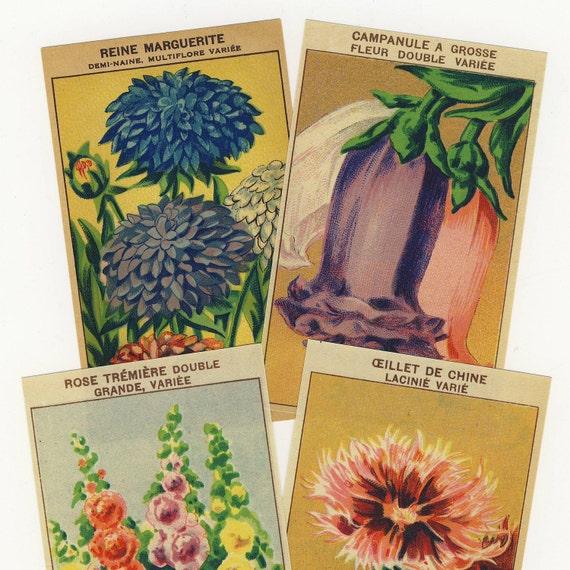 Vintage French Flower Packet Labels 24 Different - Set 2