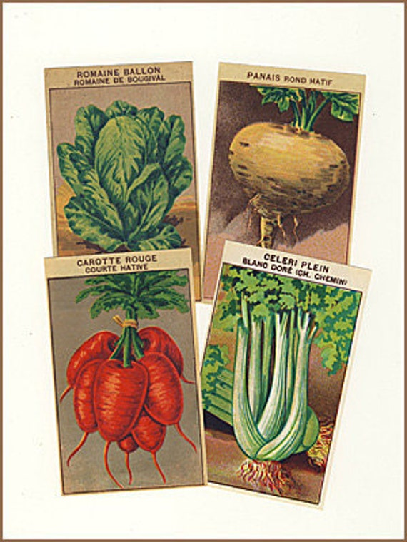 Vegetable Packet Labels Vintage French 72 All Different