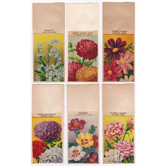 6 VINTAGE French FLOWER Seed PACKETS Set 2