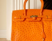 Reserved for Mulligan1962 Ostrich Leather Birkin Orange