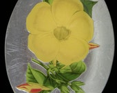 Yellow Flower Decoupage Under Glass Plate