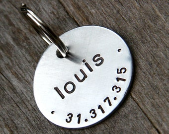 "Custom Pet Tag, Louis, in 1"" Brushed Aluminum"