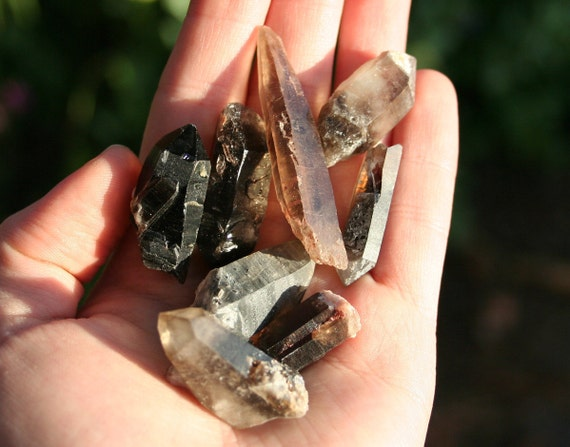 Five Natural Smoky Quartz Points from Colorado