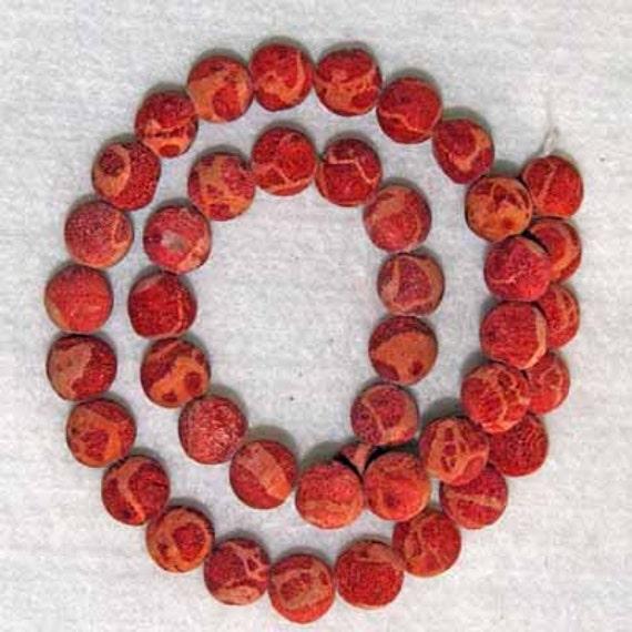 Natural Sponge Coral Beads Half Strand 10mm