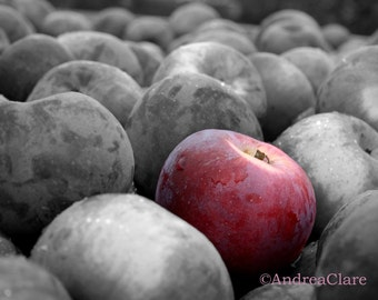 Apple Photograph, Snow White, Fine Art Photograph, Shabby Chic, Kitchen, black white, fruit, photo, print, enchanted, poisoned, red, photo