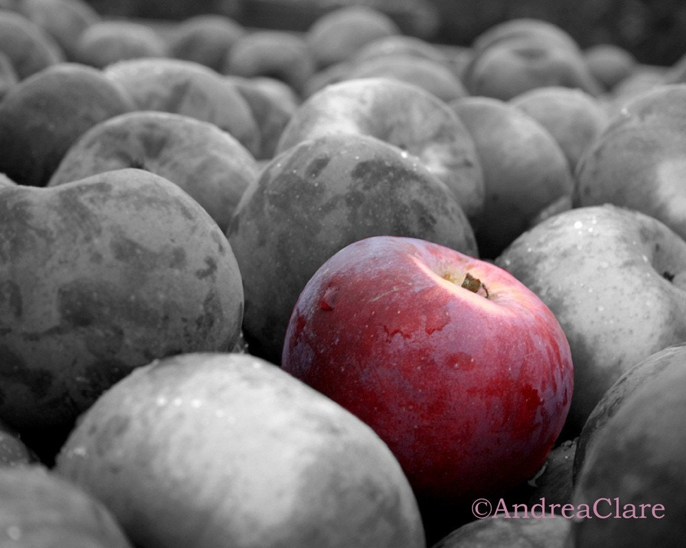 Apple Photograph Snow White Fine Art Photograph Shabby