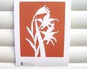 SECONDS: Art Print 10x8 - Orange Gladiolus - Modern Botanical Floral Pretty Papercut Design