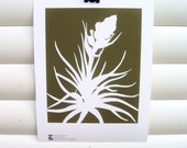 Art Print 10x8 - Chocolate Brown Tillandsia Airplant - Modern Botanical Floral Pretty Papercut Design