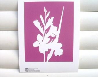 Botanical Art Print Pink Gladiolus - Modern Botanical Flower Garden Floral Nature Paper cut Design 10 x 8