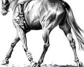 Horse Trotting Print 8 x 10