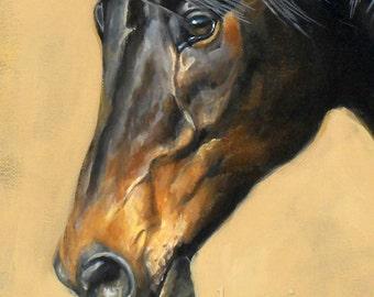 Bay Horse Print