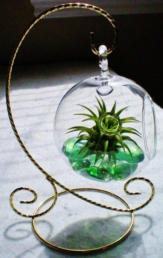 Simple Green Hanging Globe Air Plant Terrarium Tillandsia Living Art Glass Baubles Gems Tabletop Stand Holder Indoor Garden Fairy Garden