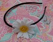 Shasta Daisy Headband