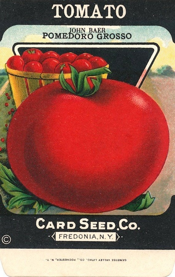 Vintage tomato seed packet free shipping