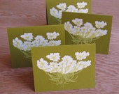 Queen Anne's Lace Notecards