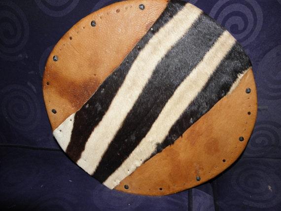 Exotic Battle Shield