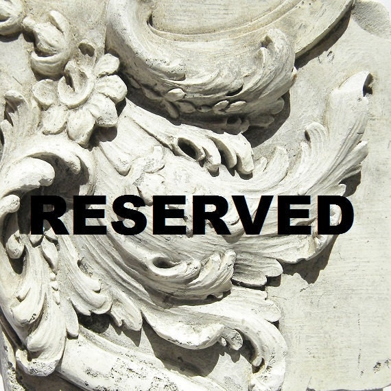 RESERVED for sweetpeaaguy     Please do not buy this