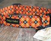 """Dog Collar """"The Carlton"""""""