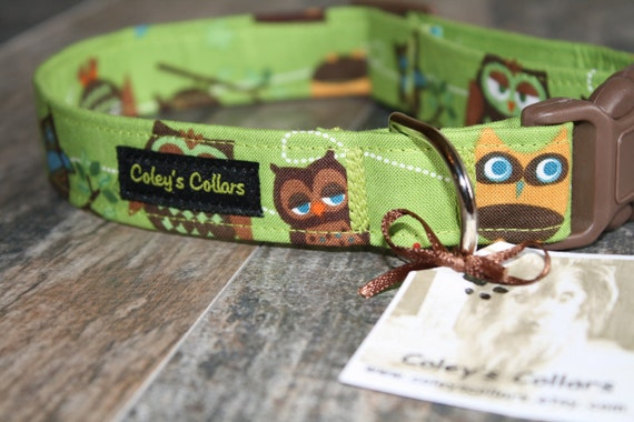"Dog Collar ""What a Hoot in Green"""