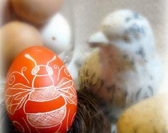 Seen on the Martha Stewart Show - Daisy Bee - Lithuania Pysanky - Hand Etched Scratched Chicken Egg - Flower - Stand or Ornament - Easter