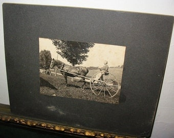 Horse Drawn  Haying Cart Antique Photograph Woman Riding Farm Cart Old Farmstead Cabinet Photo