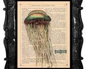 Jellyfish Art Print Vintage Book Print Dictionary Page Art Print