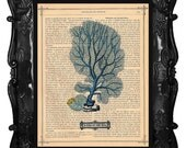 Blue Sea Fan art print, teal seafan print on an antique book page or seafan on antique music page