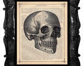 Skull Vintage Art Print Skull Print Side Portrait on an Antique 1883 Book Page Book Art Print