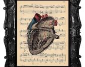 ANATOMICAL HEART art human anatomy vintage human heart dictionary page art print antique music page print black red blue ANATOMICAL Heart