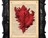 Coral Red Seashell Print Upcycled Dictionary Art Print Vintage Book Page Print