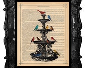 BIRD BATH print bird art on a vintage antique dictionary page, dictionary bird art bird print home decor bird fountain