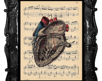 ANATOMICAL HEART art human anatomy vintage human heart dictionary page art print antique music page print black red blue ANATOMICAL Heart