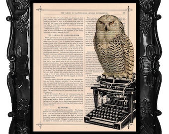 Owl on a vintage Typewriter Art Print 'The Educated Perch' print over an upcycled vintage dictionary page book art