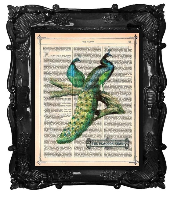 FREE SHIPPING WORLDWIDE PEACOCK KINGS PRINT on a Vintage 1883 Book Page
